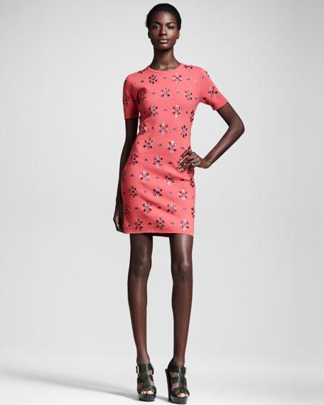 Aurora Embellished Dress
