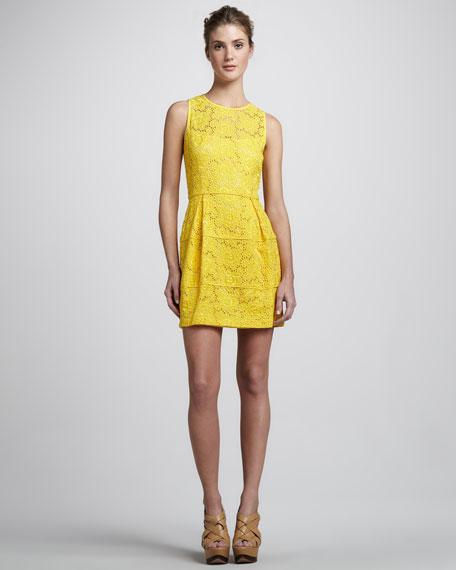 Treasure Lace Dress