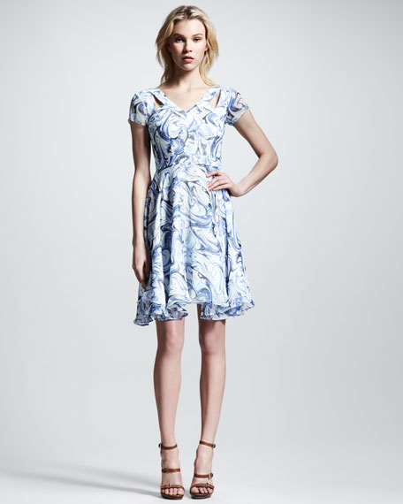 Alize Printed Chiffon Dress