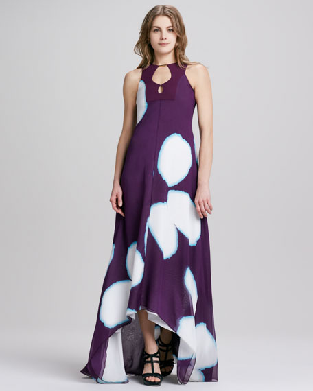 Starr Sleeveless High-Low Print Dress