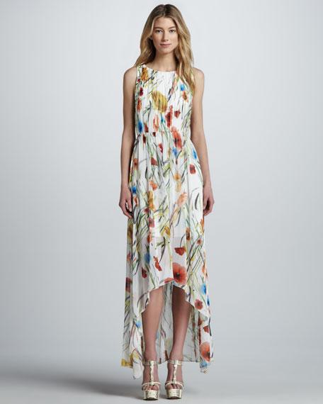 Mel Floral-Print Maxi Dress