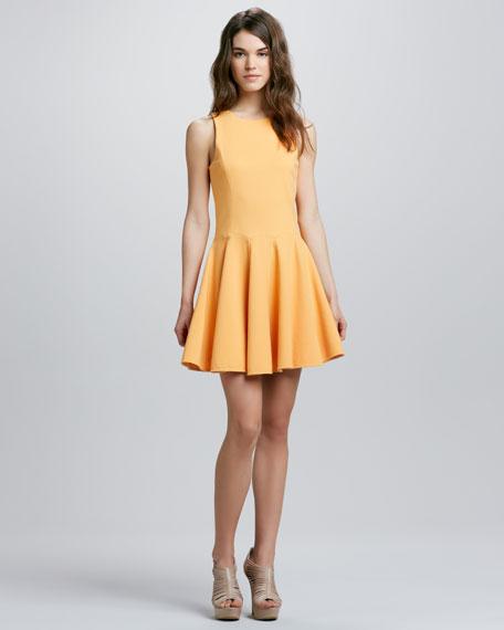 Jewel-Neckline Full-Skirt Dress