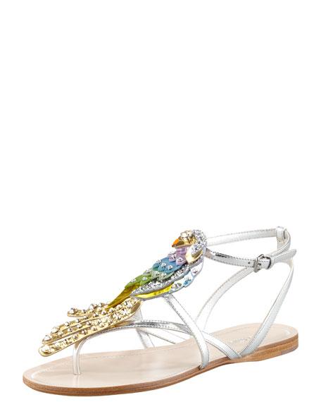 Parrot Thong Sandal
