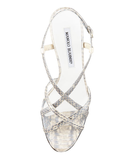 Scarsomod Snakeskin Strappy Slingback Sandal, Gray