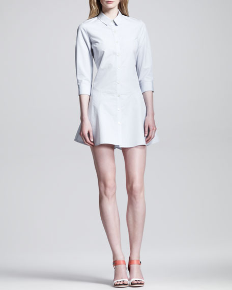 Dropped Full A-Line Shirtdress