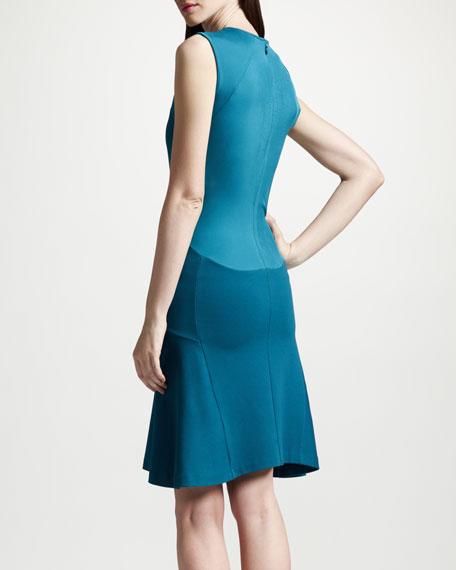 Paneled Dropped Waist Dress