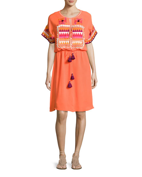 Lucianna Embroidered Blouson Dress, Orange
