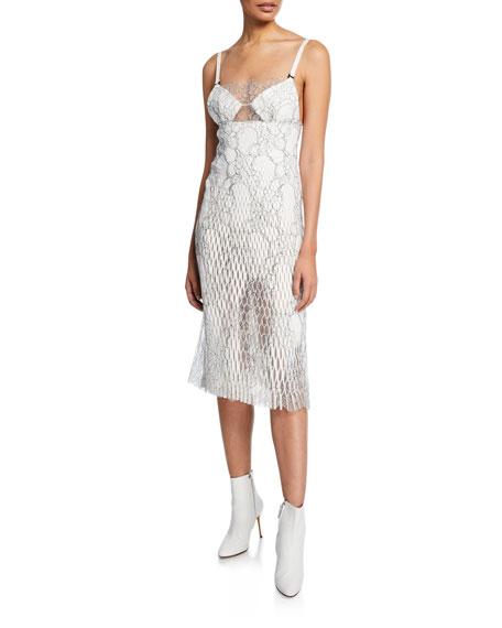 Netted Lace Midi Dress