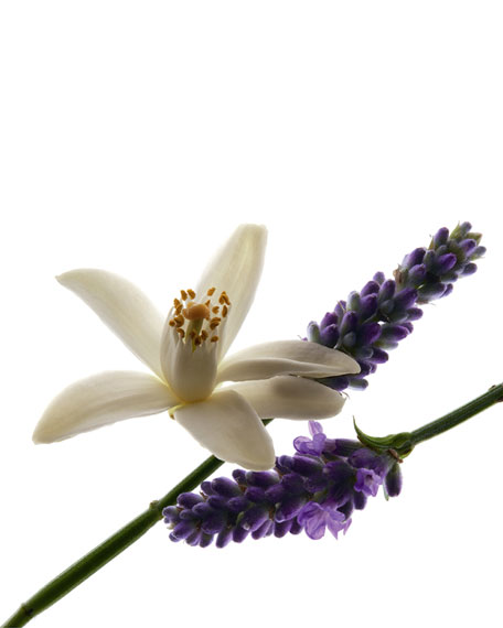 LIBRE Eau de Parfum, 1.7 oz. / 50 mL