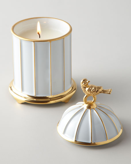 """""""Bird Cage"""" Candle"""