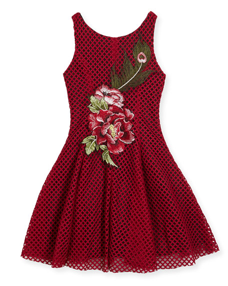 Rosie Netted Fit-and-Flare Dress, Size 4-6X