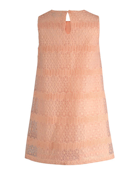 Sleeveless Floral Lace Shift Dress, Size 2-6X