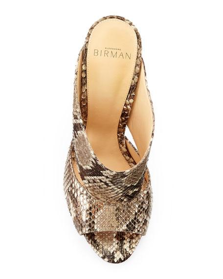 Latoya Metallic Python Mule