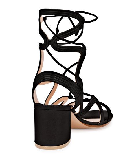 Loop-Caged Low-Heel Gladiator Sandal, Black