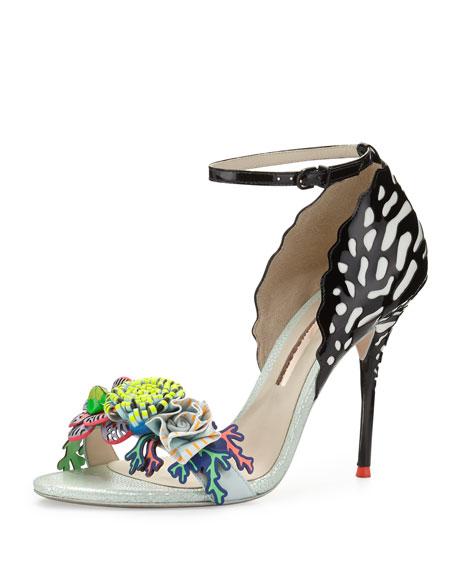 lilico sandals Sophia Webster SYiEgto