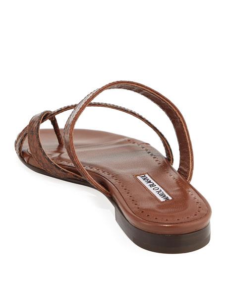 e273922e8a9f Manolo Blahnik Susa Strappy Snakeskin Slide Sandals