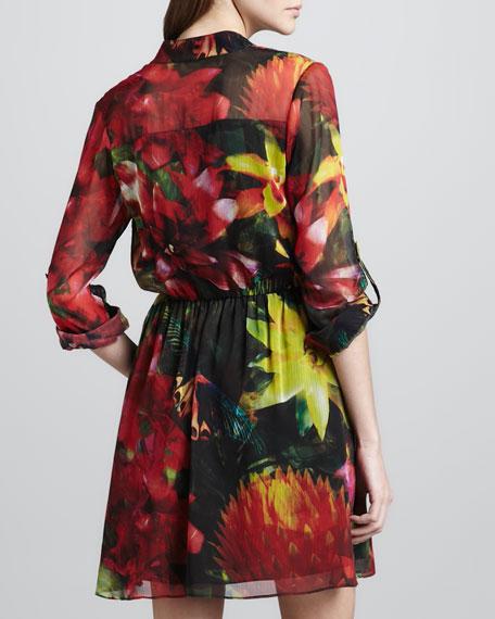 Edena Printed Shirtdress
