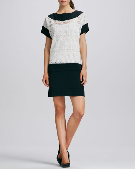 Joanna Two-Tone Lace Dress