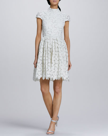 Fairy Shimmery Lace Dress