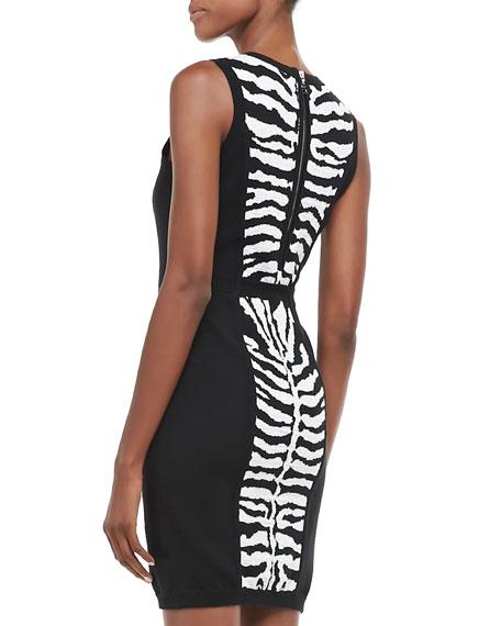 Zebra-Stripe Knit Dress