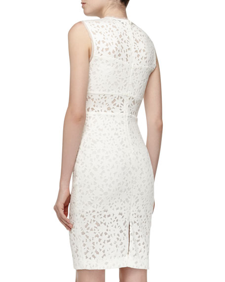 Levine Fitted Sheer Lace Dress