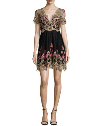 Designer Collections Marchesa Notte
