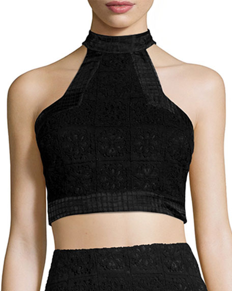 Alexis Janek Lace High-Neck Crop Top