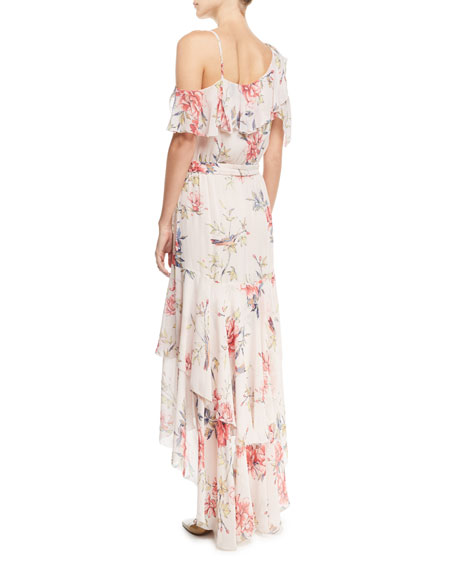 Cristeta Floral-Print Sleeveless Silk Chiffon Dress
