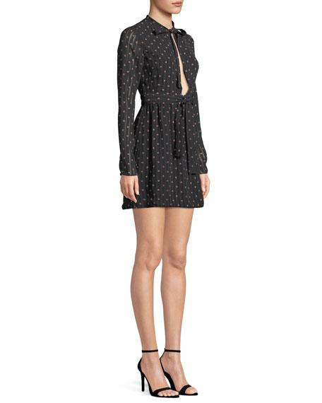 Leila Printed Long-Sleeve Mini Dress