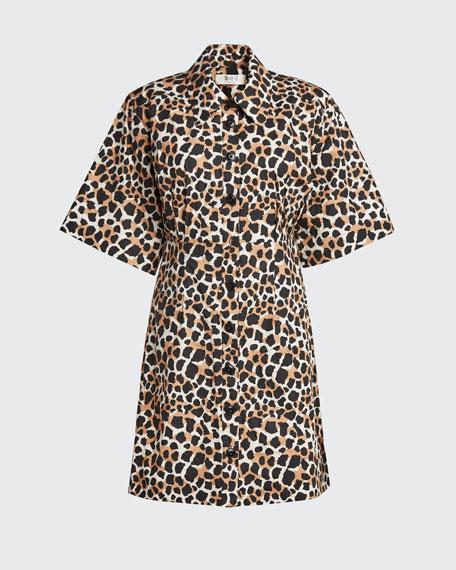 Apollo Tiered  Dress