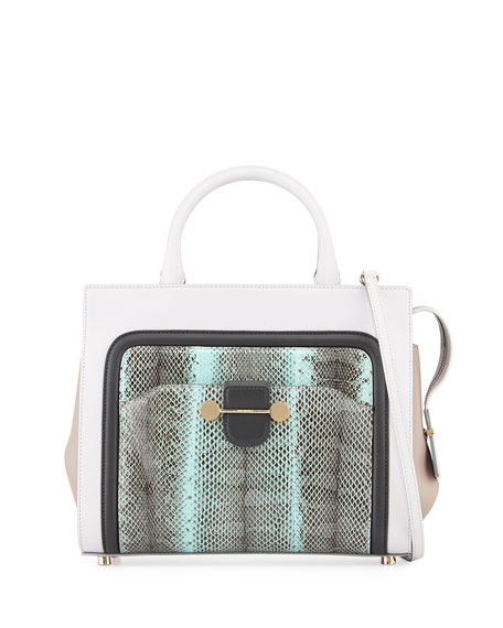 Daphne Watersnake & Leather Crossbody Tote Bag, Glass