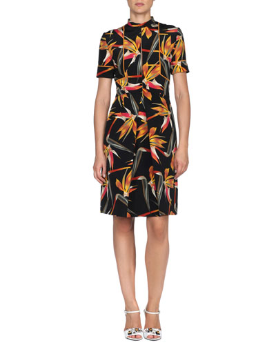 Short-Sleeve Silk Bird of Paradise-Print Dress