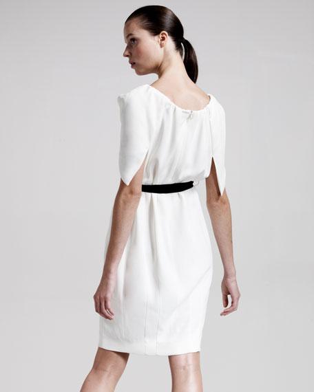 Tulip-Sleeve Dress
