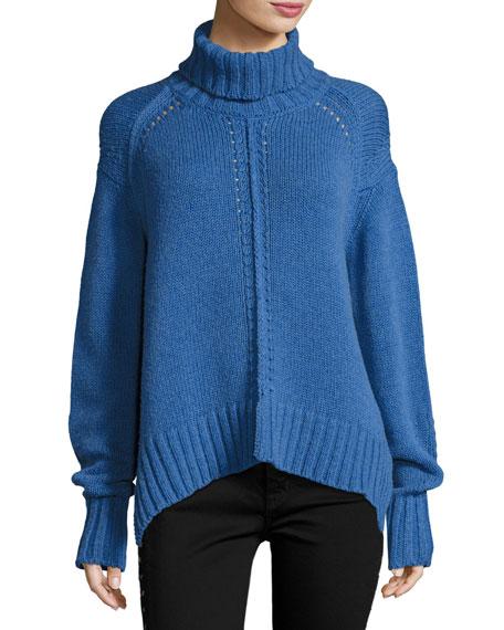 Dasty Knit Turtleneck Sweater