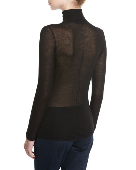 Steinem Sheer Knit Turtleneck Sweater