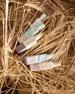 Green Wheat & Meadowsweet Cologne, 1.0 oz./ 30 mL
