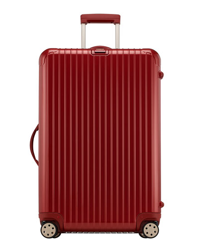 Salsa Deluxe 29 Multiwheel Upright Luggage