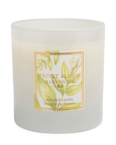 Privet Bloom Scented Candle  7.5 oz./ 215 g