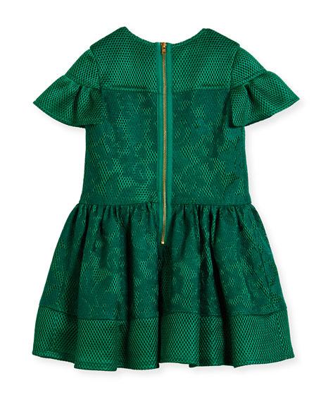 Scuba Mesh Flutter-Sleeve Dress, Size 3-6