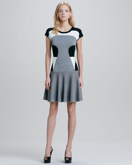 Renee Colorblock Drop-Waist Dress