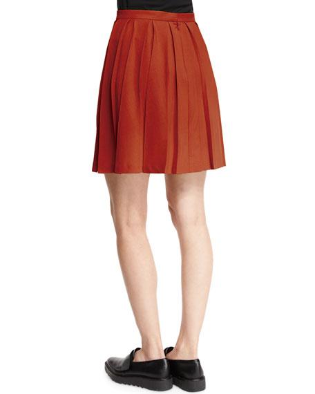 Tillberti Winslow Pleated Crepe Skirt