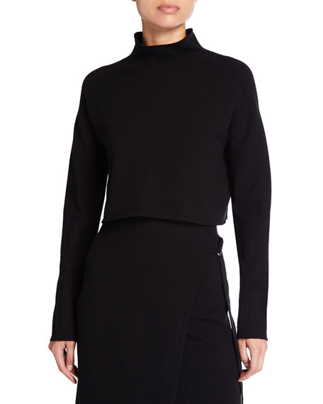 Image 1 of 1: Compact Wool Turtleneck Crop Top