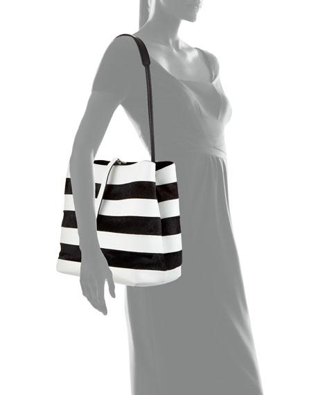 Frame Striped Leather & Calf Hair Shoulder Bag