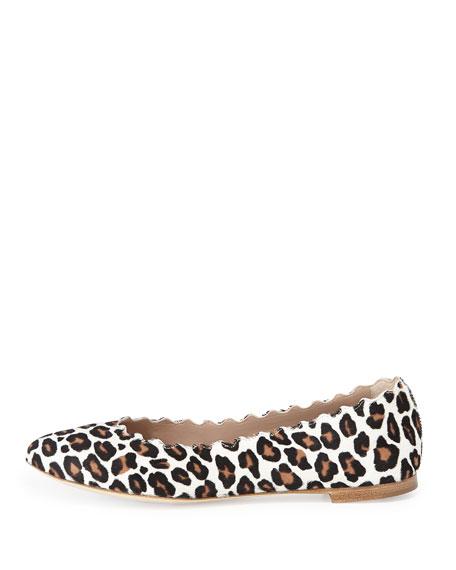 Scalloped Leopard-Print Calf Hair Ballerina Flat