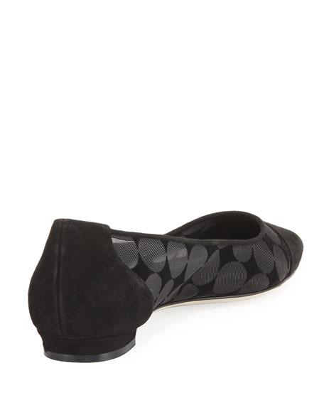 Bral Mesh Cap-Toe Ballerina Flat, Black