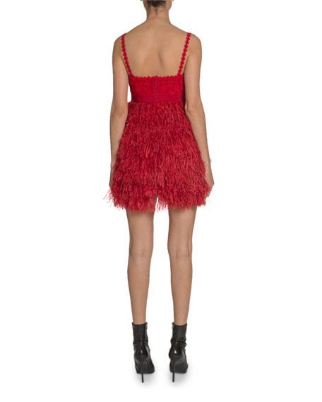 Lace & Feather Mini Dress