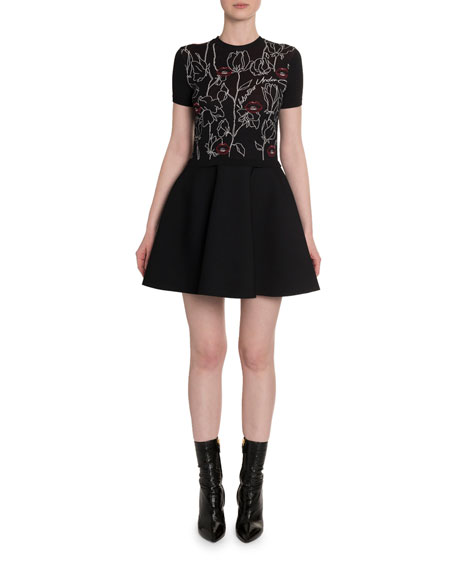 Lips & Rose Embroidered Fit-&-Flare Dress