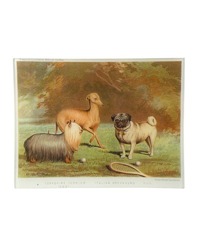Yorkshire Terrier Italian Greyhound Pug Tray