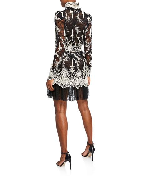 Hilaria High-Neck Lace Long-Sleeve Dress