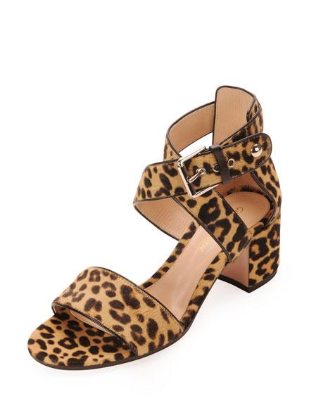 a54f34b2fb5 Gianvito Rossi Leopard-Print Calf Hair Low-Heel Sandal